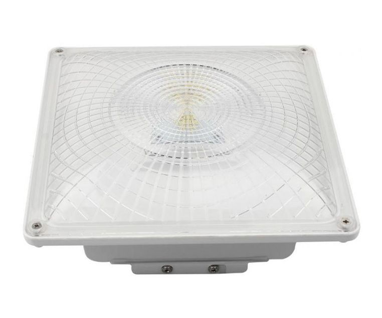 Canopy Ceiling Fixture 35W