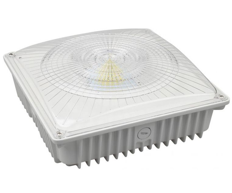Canopy Ceiling Fixture 75W